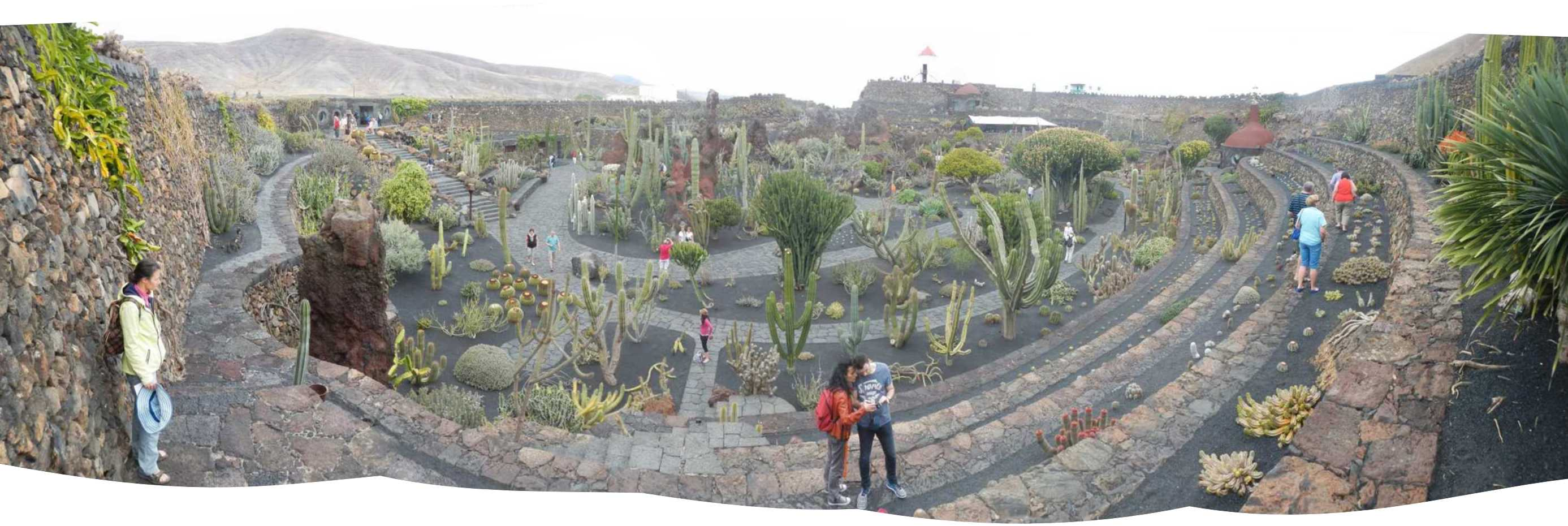 panoramic view of the cactus garden another csar manrique creation amphitheatre like with walls of volcanic stones